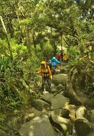キナバル山9