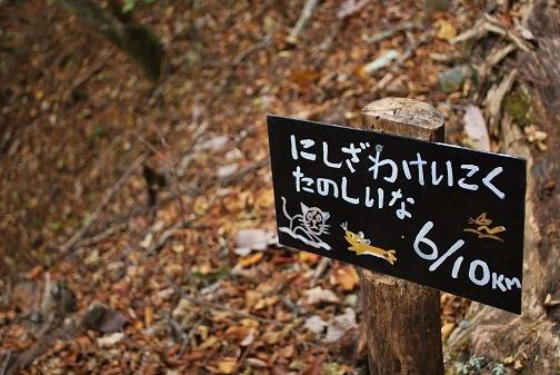 西沢渓谷37