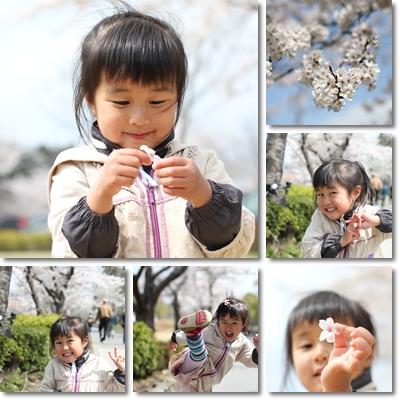 桜とつくしとももね1