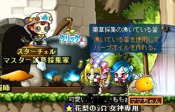 Maple110908_133522.jpg