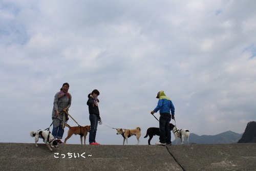 IMG_0306-1.jpg