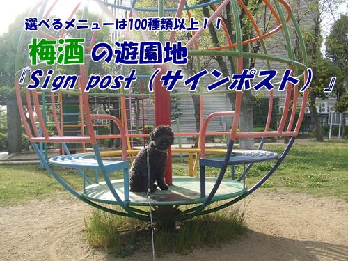 201305122150240e7.jpg
