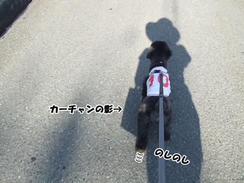 20130605222322f46.jpg