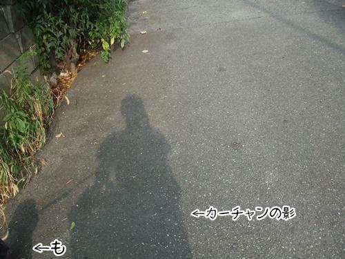 20130811213235c2a.jpg