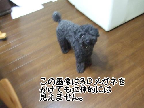20130903220854deb.jpg