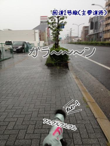 2013091621273036e.jpg