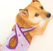 しゃぼん玉バッククロスマナーパンツ(中型犬用)