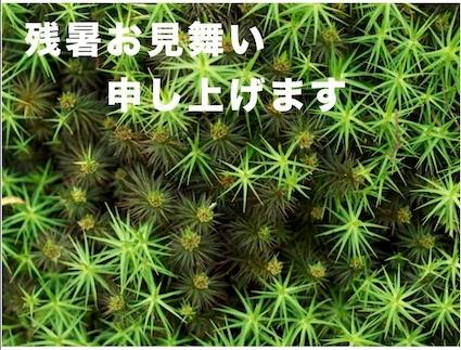 スクリーンショット(2012-08-11 18.52.01)
