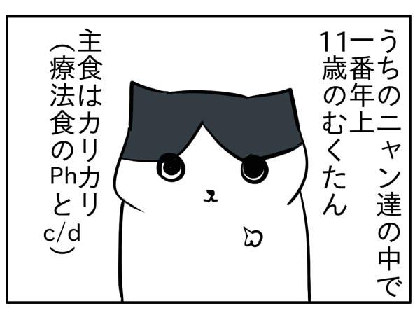 2014 12 13 1