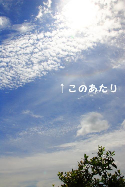 20130521_01.jpg