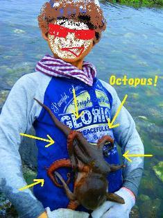 Octopus!!.jpg
