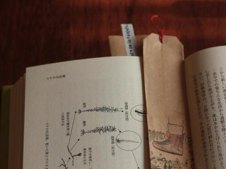 siori+book.jpg