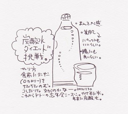 20141130炭酸水s
