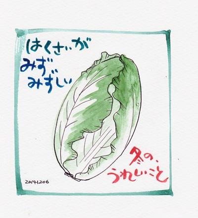 20141206白菜s