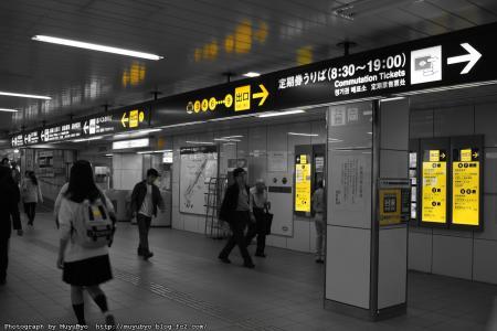 DSC00950_S.jpg