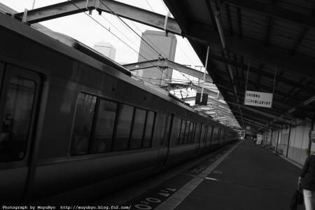 DSC00951_S.jpg