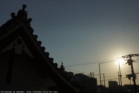 DSC01183_S.jpg