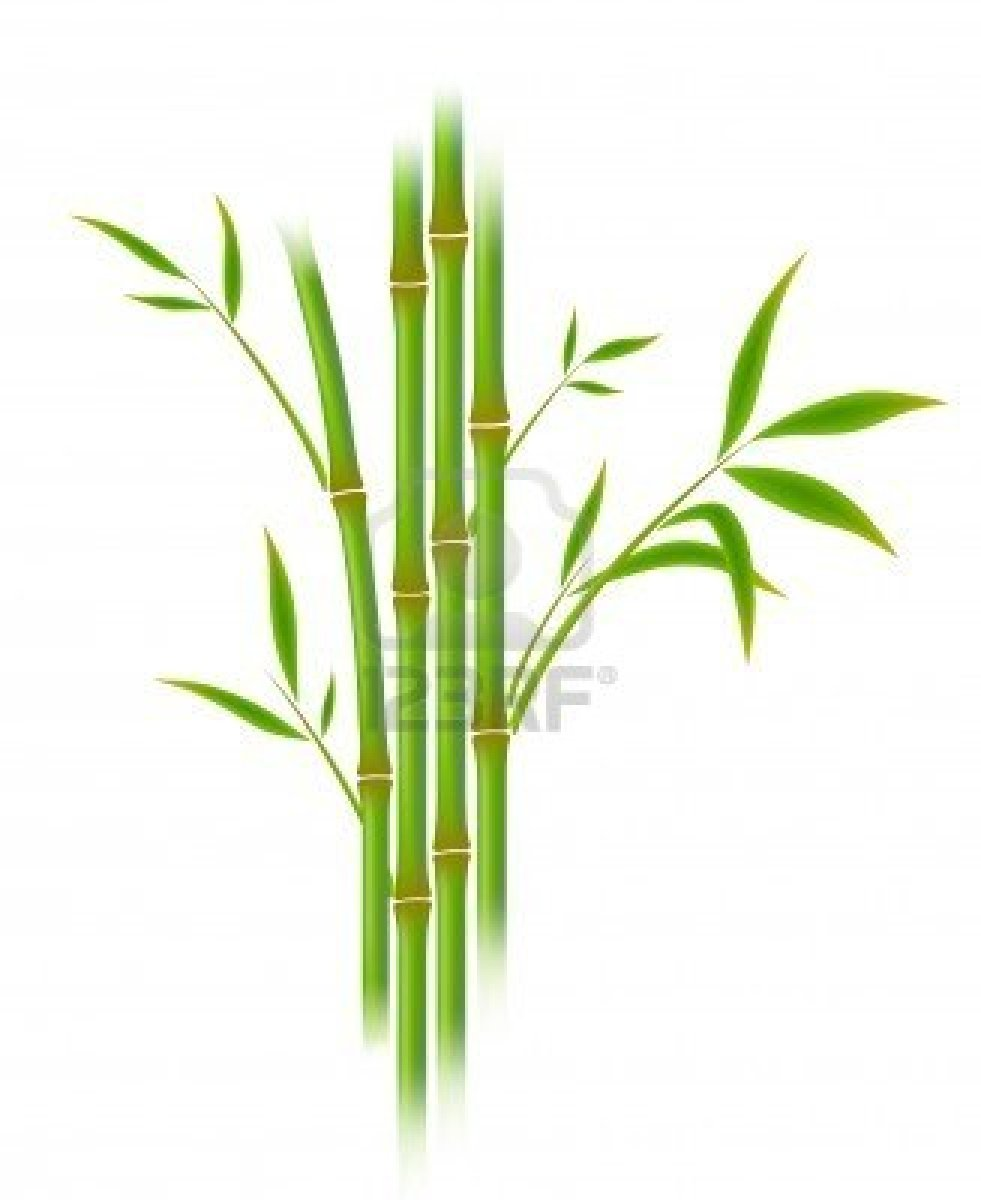 2646060-vector-illustration-of-bamboo-gradient-mesh.jpg