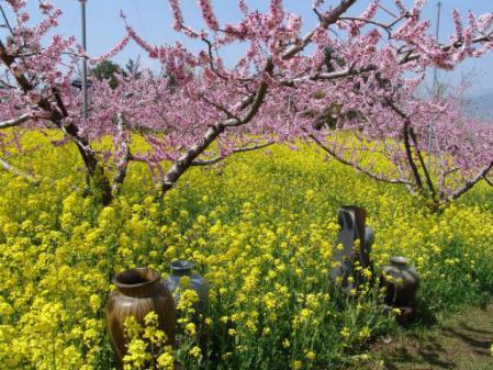 tntnH25-04-05花と焼き物野外作陶 (14)