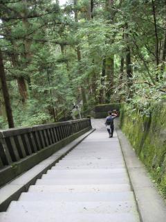 家康廟所への階段