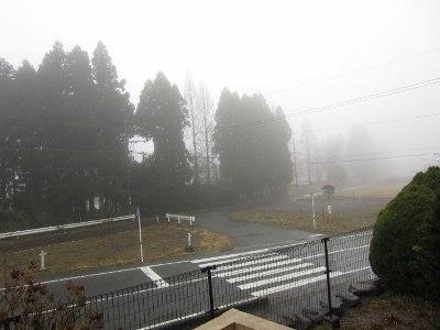 2012_3_18雨写真