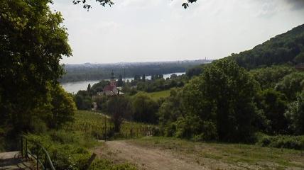 森歩き5カーレンベルグドルガー村がみえてきた