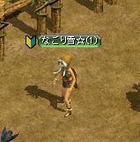 1208金鯖1