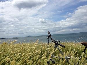 海と自転車 - コピー
