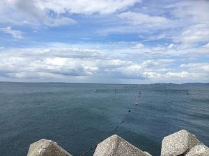 宇津江海岸堤防1
