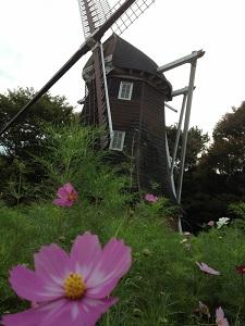 名城公園風車