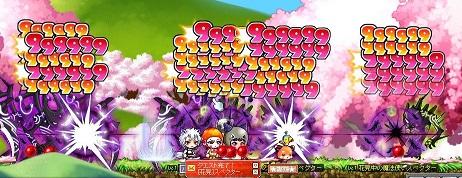 Maple130327_010120.jpg