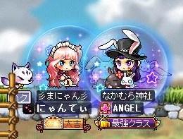 Maple130329_105407.jpg
