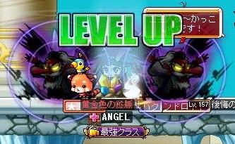 Maple130330_131551.jpg