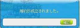 Maple130611_212349.jpg