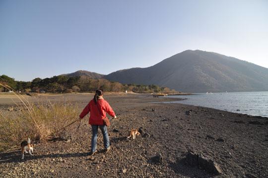 107本栖湖散歩2