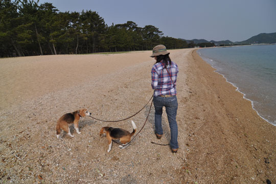 422海岸散歩