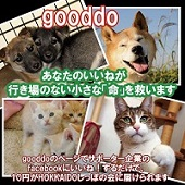 shippo gooddo
