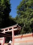 第1番納札社:若宮神社09