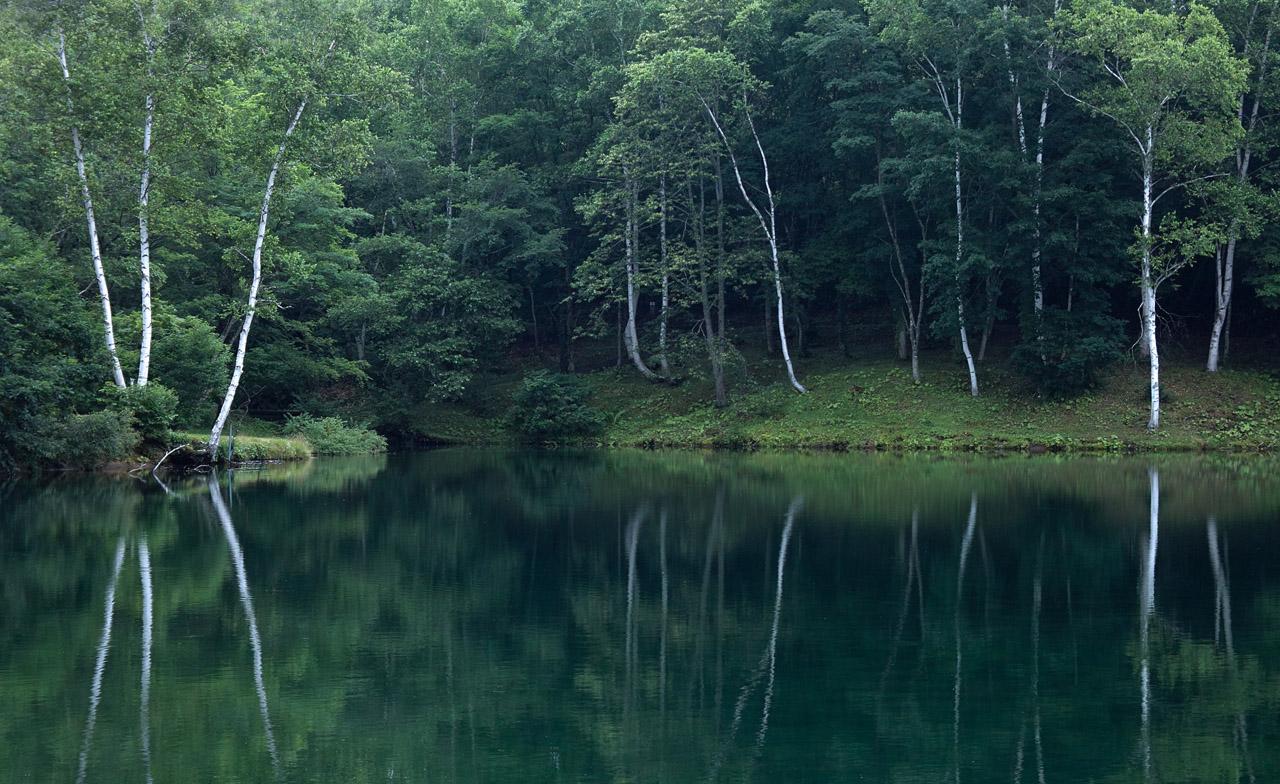 1655 笹ヶ峰牧場清水ヶ池■B 1280×784