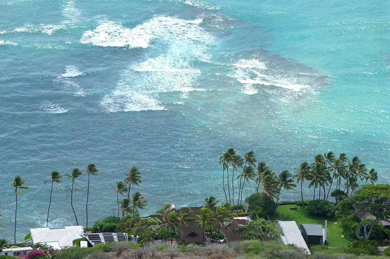 9675 ヤシの木と海 1280×850