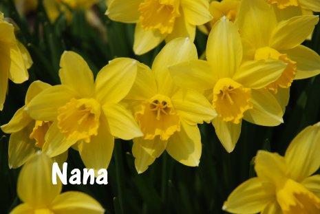spring20-4.jpg