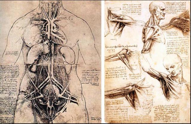 Leonardo12.jpg
