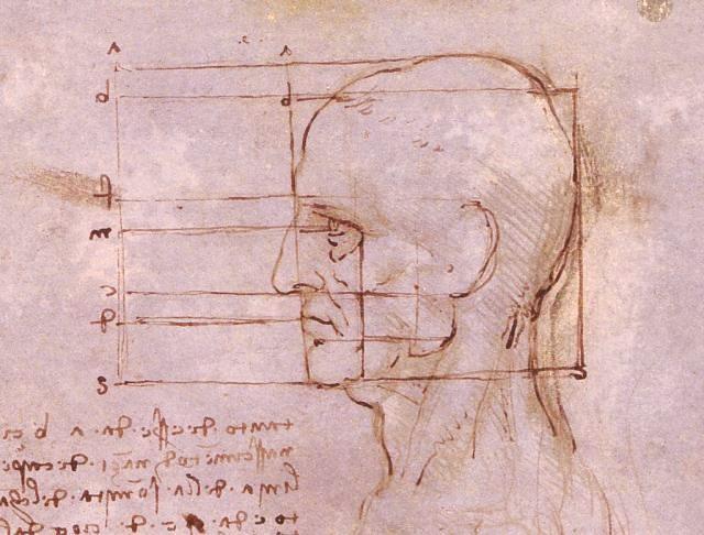 Leonardo28.jpg