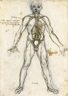 Leonardo7.jpg