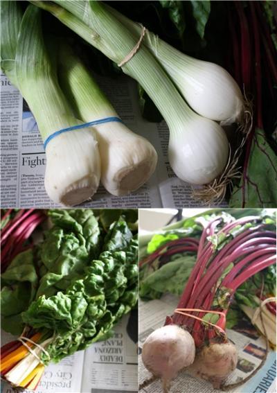 spring+onions_convert_20120316080633.jpg