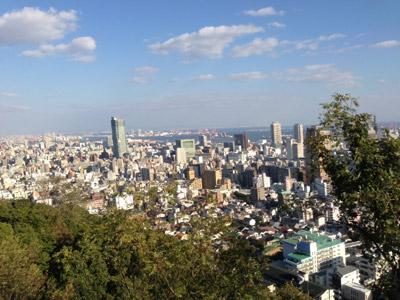 2012_11_03_4.jpg