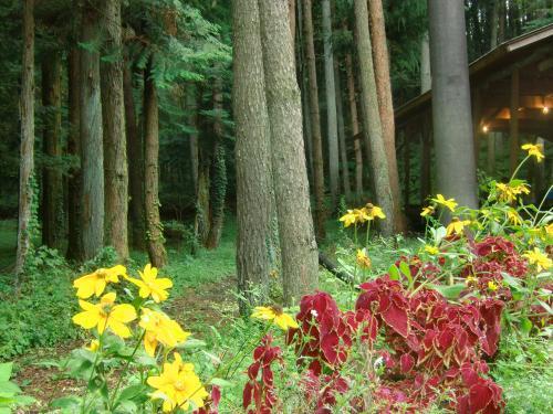 木立と花2