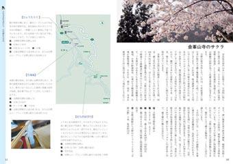 P56-81:花寺7月4日最新-5