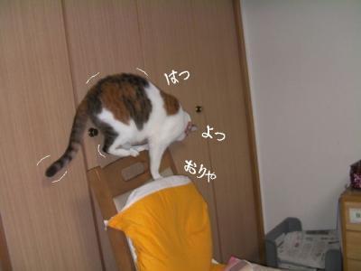 のみ取り生活07