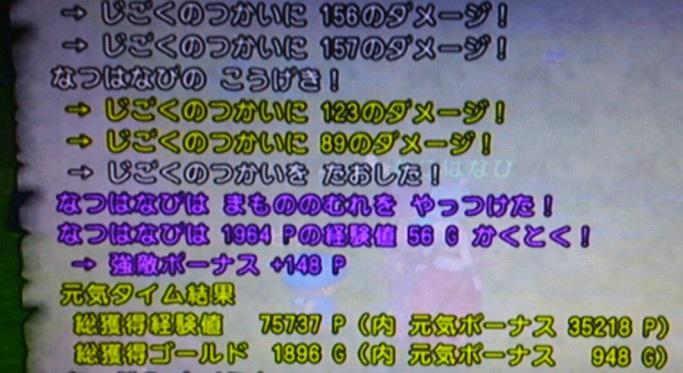 IMG_20130529_1710352.jpg